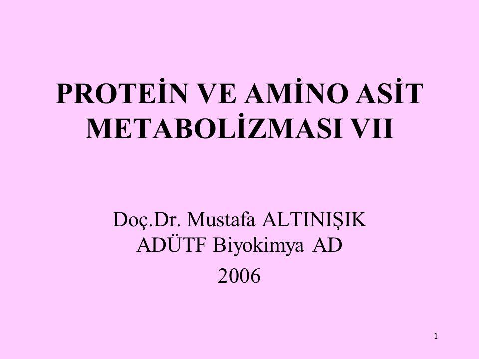 1 PROTEİN VE AMİNO ASİT METABOLİZMASI VII Doç.Dr. Mustafa ALTINIŞIK ADÜTF Biyokimya AD 2006