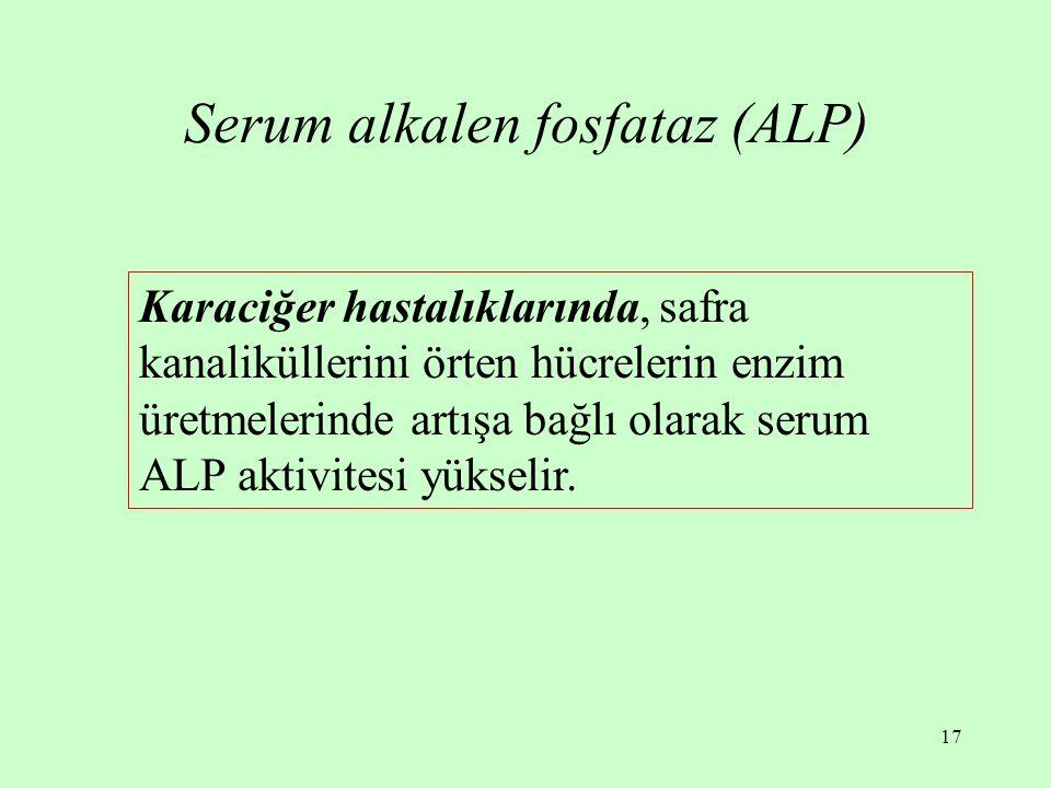 17 Serum alkalen fosfataz (ALP) Karaciğer hastalıklarında, safra kanaliküllerini örten hücrelerin enzim üretmelerinde artışa bağlı olarak serum ALP aktivitesi yükselir.