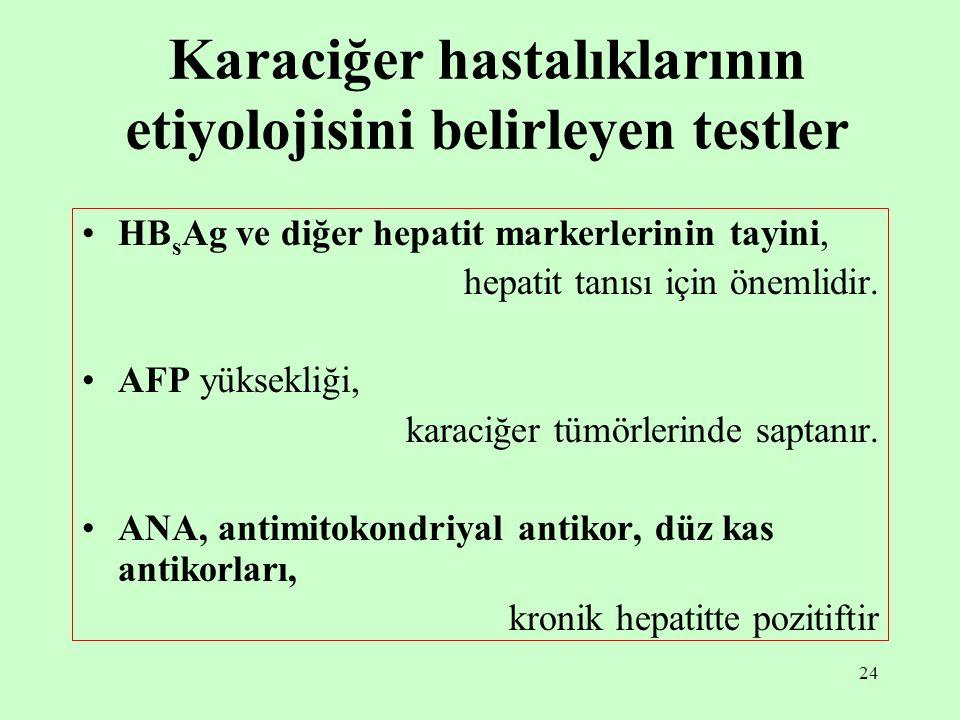 24 Karaciğer hastalıklarının etiyolojisini belirleyen testler HB s Ag ve diğer hepatit markerlerinin tayini, hepatit tanısı için önemlidir.