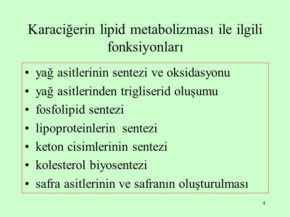 4 Karaciğerin lipid metabolizması ile ilgili fonksiyonları yağ asitlerinin sentezi ve oksidasyonu yağ asitlerinden trigliserid oluşumu fosfolipid sentezi lipoproteinlerin sentezi keton cisimlerinin sentezi kolesterol biyosentezi safra asitlerinin ve safranın oluşturulması