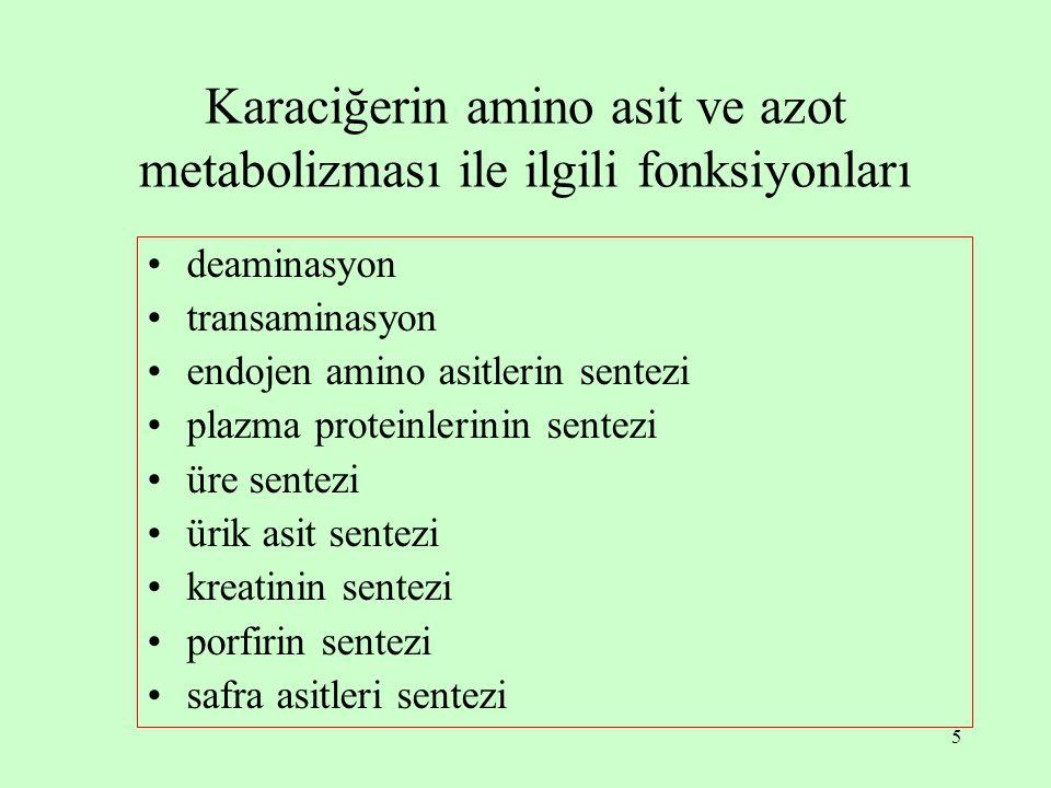 5 Karaciğerin amino asit ve azot metabolizması ile ilgili fonksiyonları deaminasyon transaminasyon endojen amino asitlerin sentezi plazma proteinlerinin sentezi üre sentezi ürik asit sentezi kreatinin sentezi porfirin sentezi safra asitleri sentezi