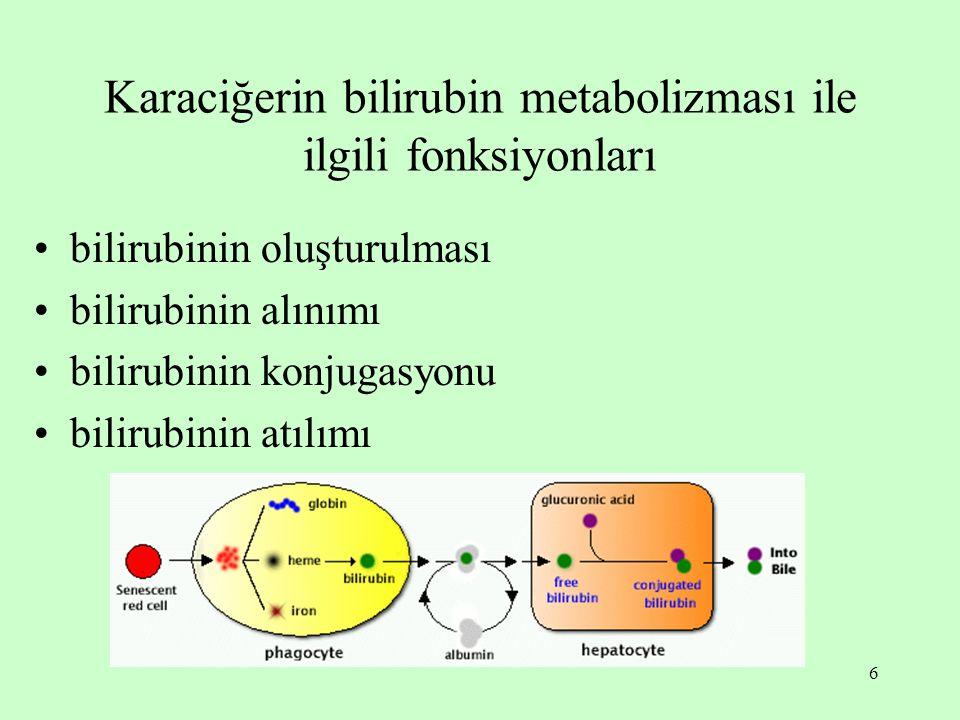 6 Karaciğerin bilirubin metabolizması ile ilgili fonksiyonları bilirubinin oluşturulması bilirubinin alınımı bilirubinin konjugasyonu bilirubinin atılımı