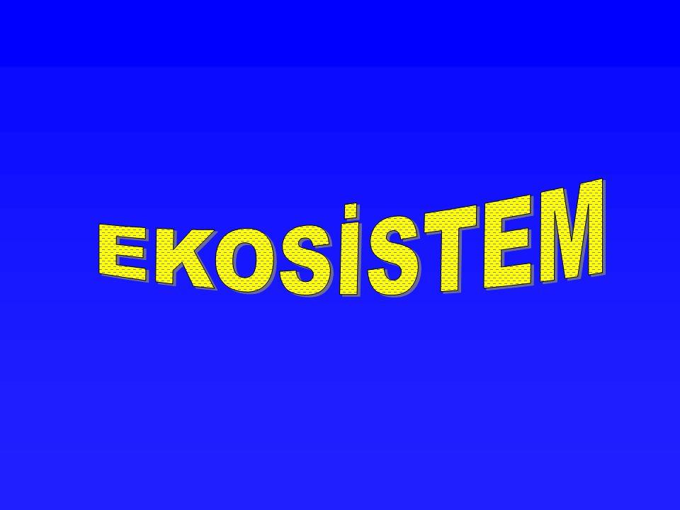 EKOSİSTEM Canlı organizmalarla cansız çevre elementleri birbiriyle sıkı sıkıya bağlıdır.