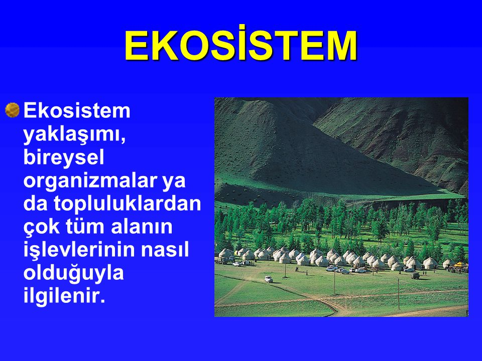 Enerji akışı Ekosistemde enerji akışı tek yönlüdür.