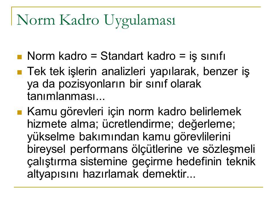 Norm Kadro Uygulaması Norm kadro = Standart kadro = iş sınıfı Tek tek işlerin analizleri yapılarak, benzer iş ya da pozisyonların bir sınıf olarak tan