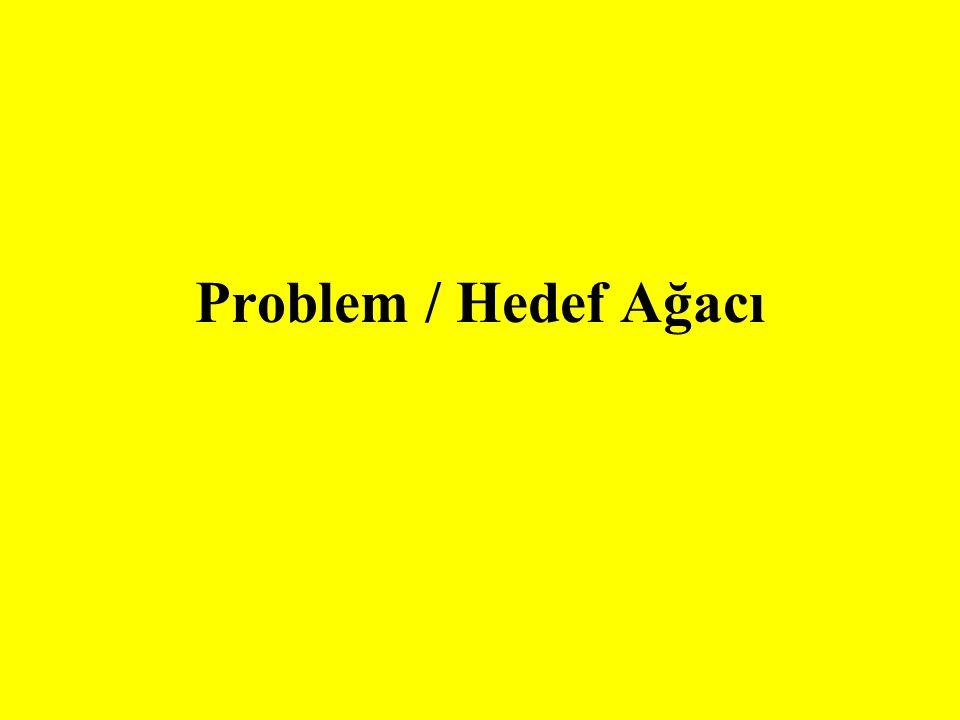 Problem analizi mevcut durumun olumsuz yönlerini tanımlar ve tenımlanan problemler arasında sebep ve etki ilişkilerini oluşturur.