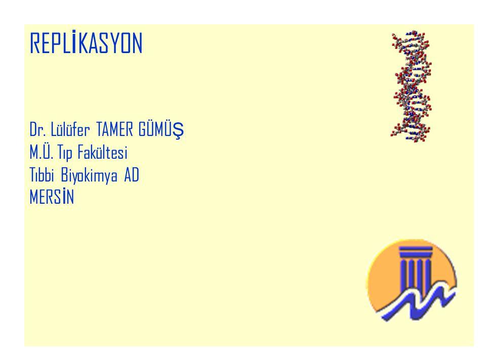 2 Hücre bölünmesi için; Çift zincirli DNA nın bir eş modelinin oluşturulması; REPLİKASYON Hücre yaşamındaki gerekli protein sentezi için DNA daki genetik bilginin RNA ya aktarılması; TRANSKRİPSİYON mRNA nın sitoplazmaya geçerek gerekli protein sentezi için mRNA daki bilginin proteine dönüştürülmesi; TRANSLASYON işlemlerinin HATASIZ YERİNE GETİRİLMESİ GEREKİR!!!!