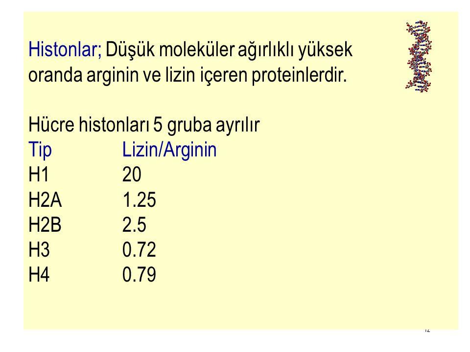 12 Histonlar; Düşük moleküler ağırlıklı yüksek oranda arginin ve lizin içeren proteinlerdir. Hücre histonları 5 gruba ayrılır TipLizin/Arginin H120 H2