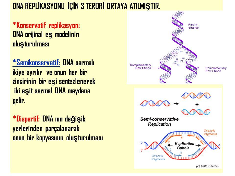 28 DNA REPL İ KASYONU İ Ç İ N 3 TEROR İ ORTAYA ATILMI Ş TIR. *Konservatif replikasyon: DNA orijinal e ş modelinin olu ş turulması *Semikonservatif: DN