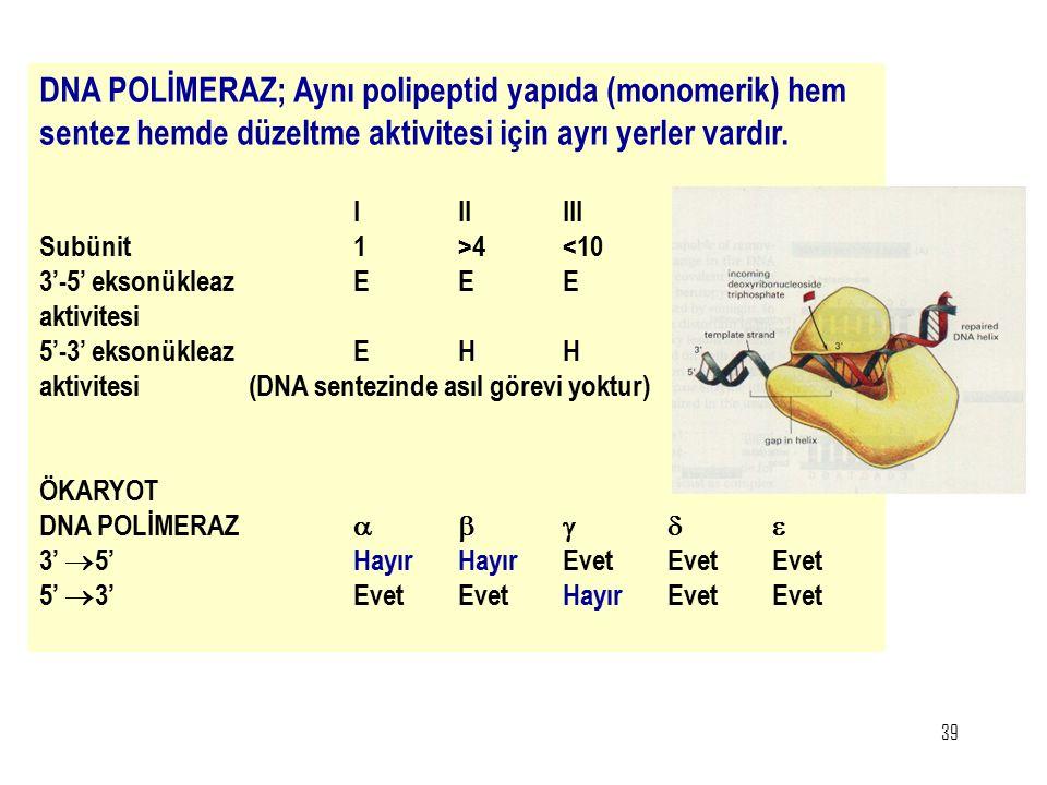 39 DNA POLİMERAZ; Aynı polipeptid yapıda (monomerik) hem sentez hemde düzeltme aktivitesi için ayrı yerler vardır. IIIIII Subünit1>4<10 3'-5' eksonükl