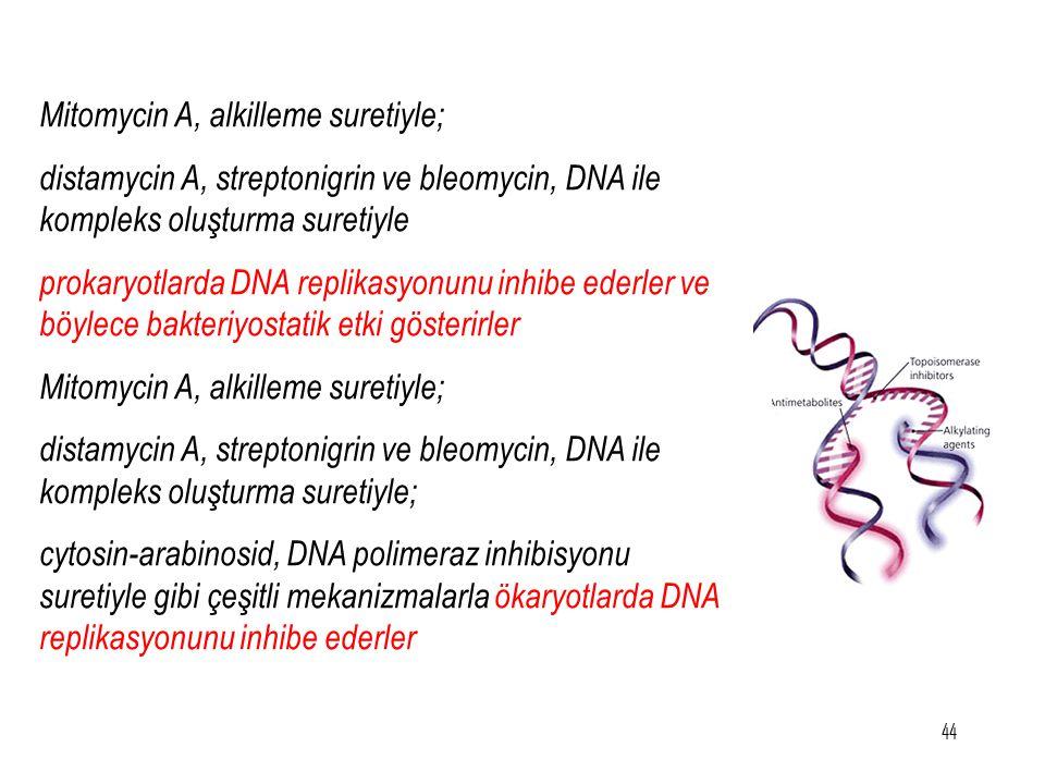 Mitomycin A, alkilleme suretiyle; distamycin A, streptonigrin ve bleomycin, DNA ile kompleks oluşturma suretiyle prokaryotlarda DNA replikasyonunu inh