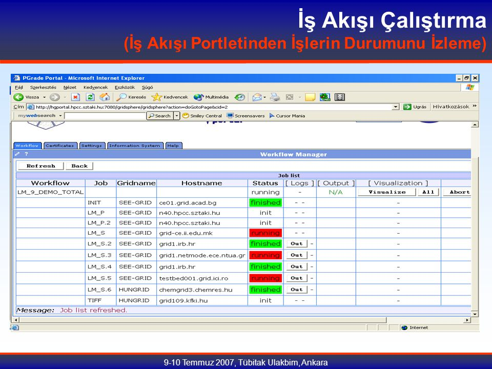9-10 Temmuz 2007, Tübitak Ulakbim, Ankara İş Akışı Çalıştırma (İş Akışı Portletinden İşlerin Durumunu İzleme)
