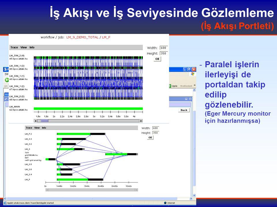 9-10 Temmuz 2007, Tübitak Ulakbim, Ankara İş Akışı ve İş Seviyesinde Gözlemleme (İş Akışı Portleti) -Paralel işlerin ilerleyişi de portaldan takip edilip gözlenebilir.