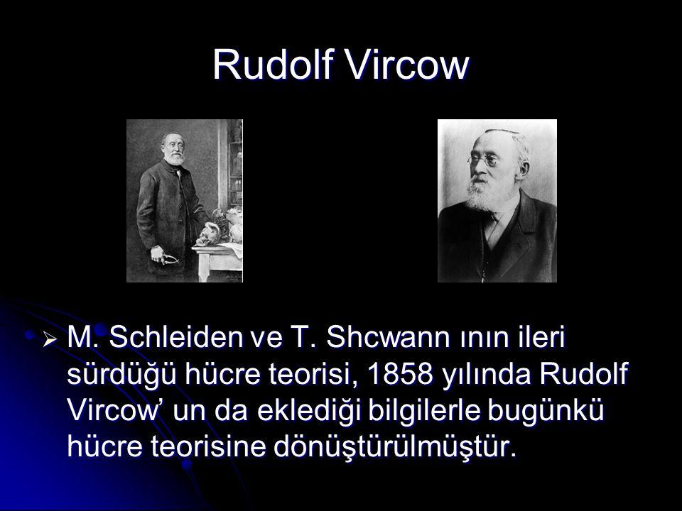 Rudolf Vircow  M. Schleiden ve T. Shcwann ının ileri sürdüğü hücre teorisi, 1858 yılında Rudolf Vircow' un da eklediği bilgilerle bugünkü hücre teori