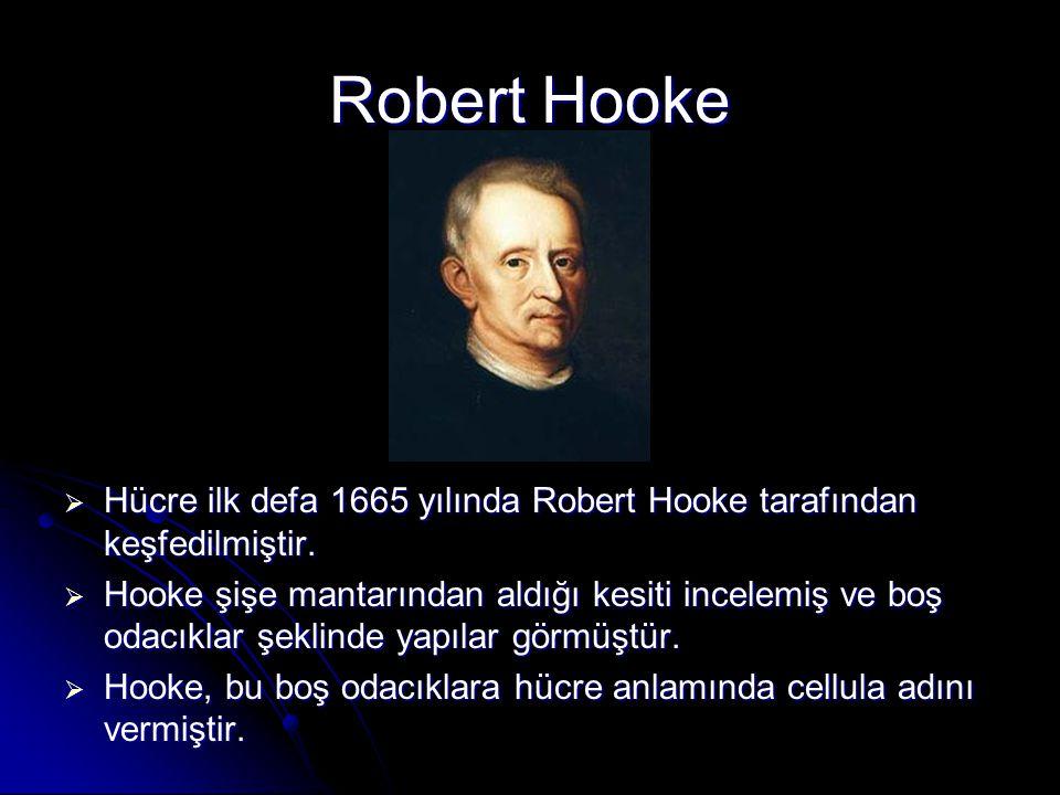 Robert Hooke  Hücre ilk defa 1665 yılında Robert Hooke tarafından keşfedilmiştir.  Hooke şişe mantarından aldığı kesiti incelemiş ve boş odacıklar ş
