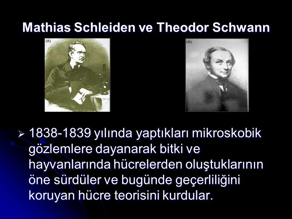 Mathias Schleiden ve Theodor Schwann  1838-1839 yılında yaptıkları mikroskobik gözlemlere dayanarak bitki ve hayvanlarında hücrelerden oluştuklarının