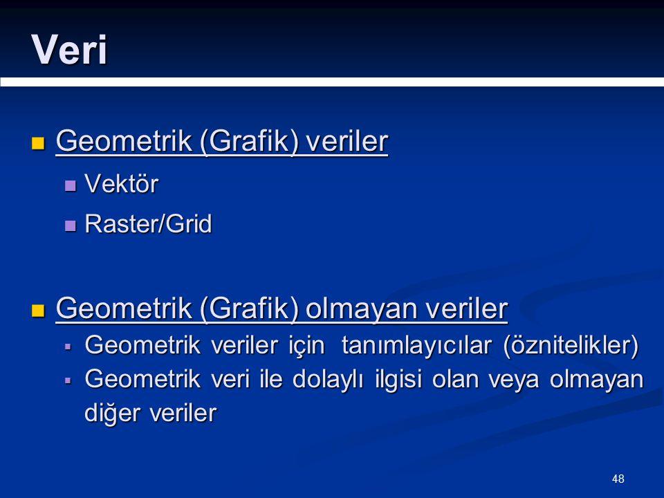 48 Veri Geometrik (Grafik) veriler Geometrik (Grafik) veriler Vektör Vektör Raster/Grid Raster/Grid Geometrik (Grafik) olmayan veriler Geometrik (Grafik) olmayan veriler  Geometrik veriler için tanımlayıcılar (öznitelikler)  Geometrik veri ile dolaylı ilgisi olan veya olmayan diğer veriler