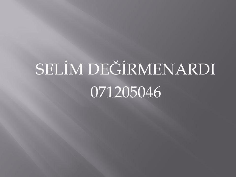 SELİM DEĞİRMENARDI 071205046
