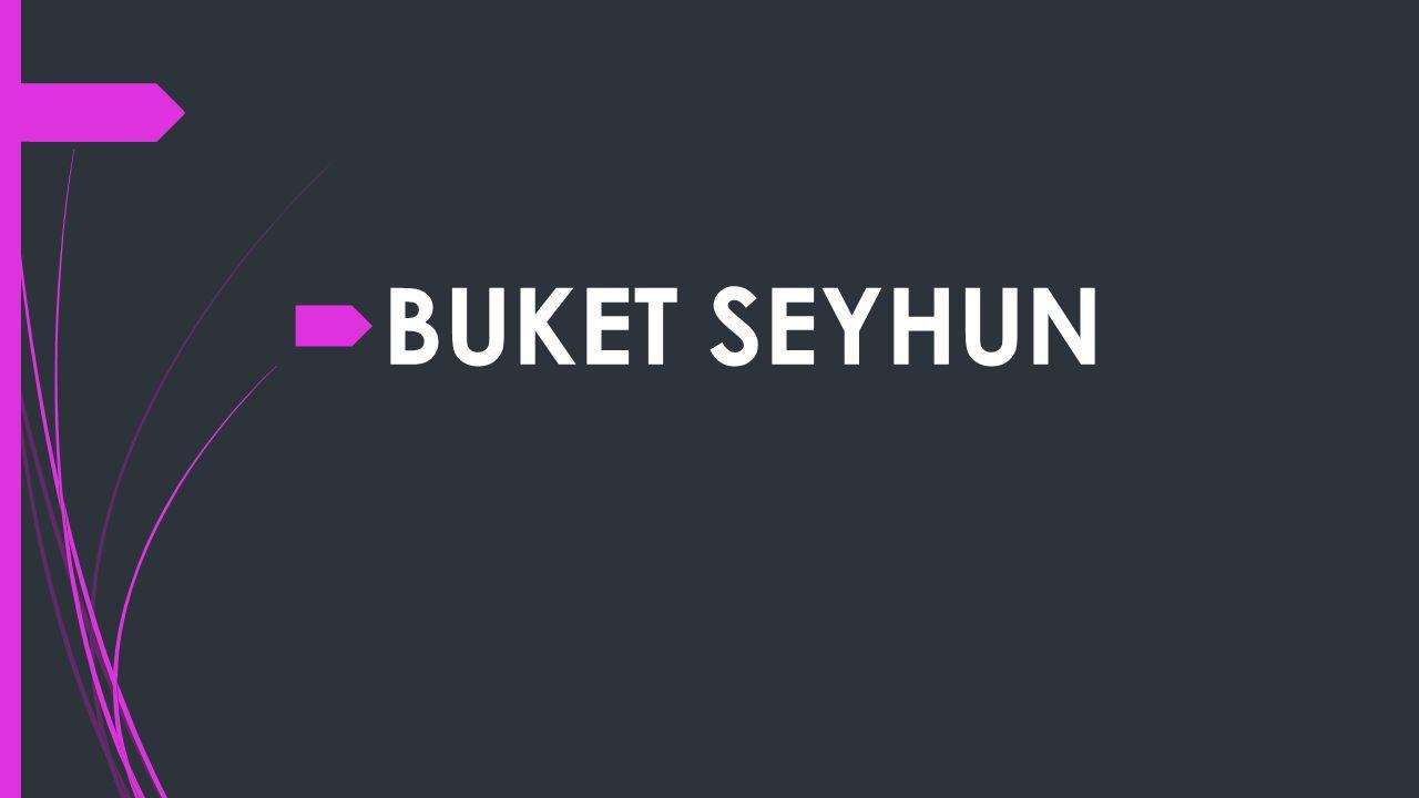  BUKET SEYHUN