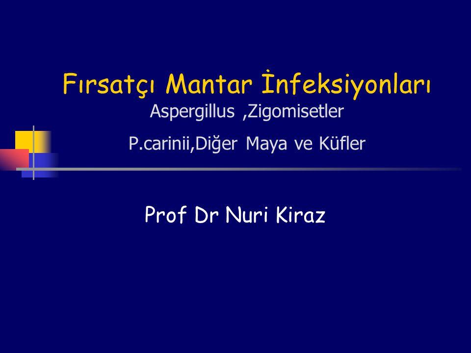 Fırsatçı Mantar İnfeksiyonları Aspergillus,Zigomisetler P.carinii,Diğer Maya ve Küfler Prof Dr Nuri Kiraz