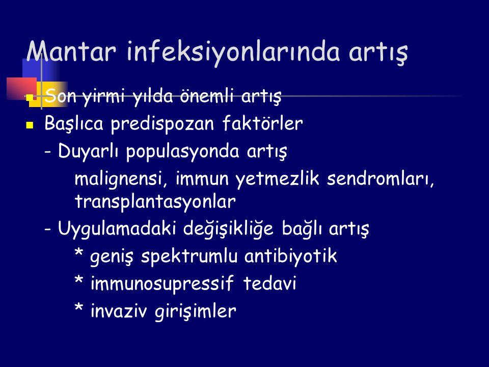 Pneumocystis carinii (P.jiroveci) Pneumocystis carini, bağışıklığı baskılanmış hastalarda pnömoniye neden olan fırsatçı bir mikroorganizmadır.