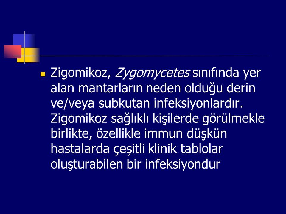 Zigomikoz, Zygomycetes sınıfında yer alan mantarların neden olduğu derin ve/veya subkutan infeksiyonlardır. Zigomikoz sağlıklı kişilerde görülmekle bi