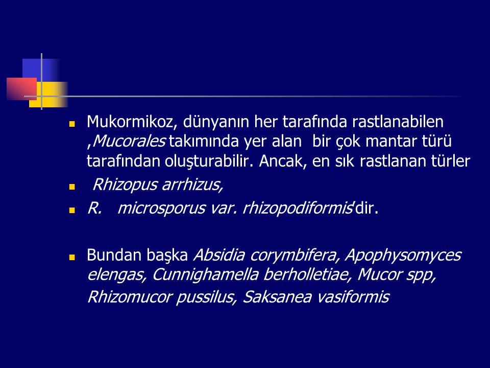 Mukormikoz, dünyanın her tarafında rastlanabilen,Mucorales takımında yer alan bir çok mantar türü tarafından oluşturabilir. Ancak, en sık rastlanan tü