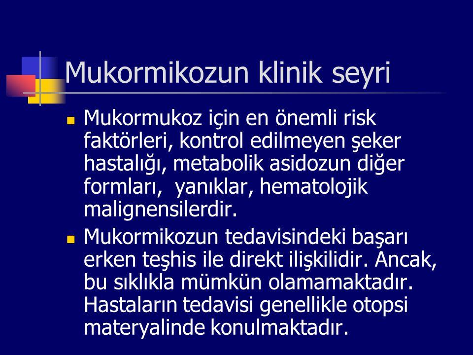 Mukormikozun klinik seyri Mukormukoz için en önemli risk faktörleri, kontrol edilmeyen şeker hastalığı, metabolik asidozun diğer formları, yanıklar, h