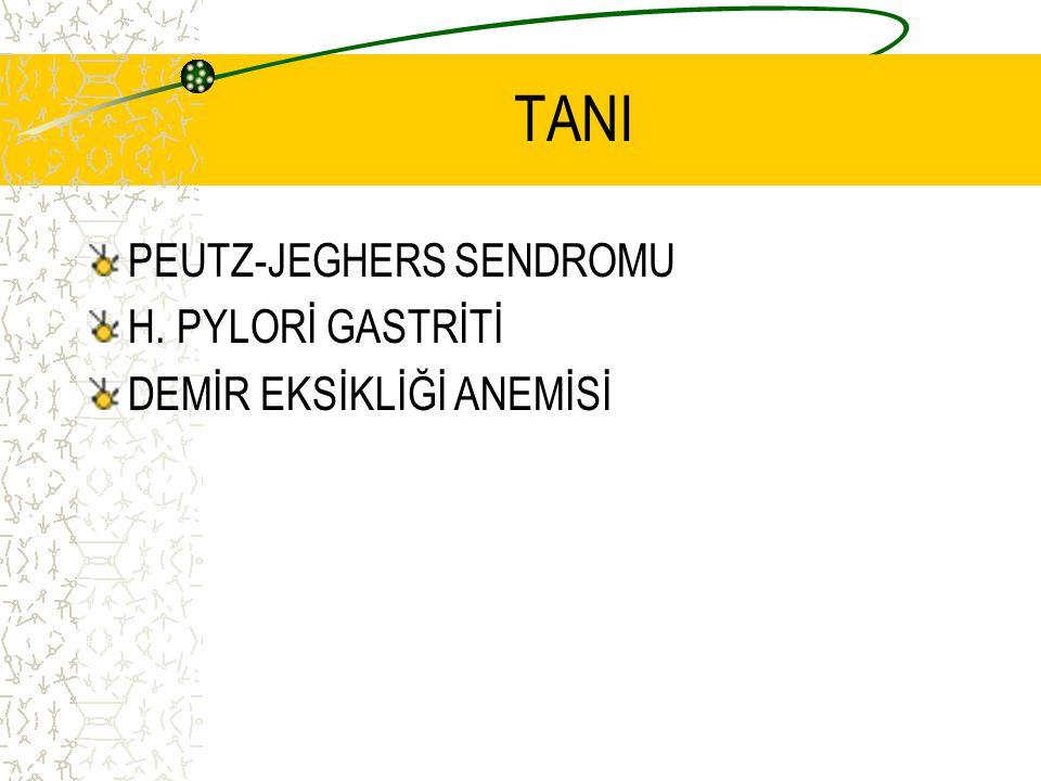 TANI PEUTZ-JEGHERS SENDROMU H. PYLORİ GASTRİTİ DEMİR EKSİKLİĞİ ANEMİSİ