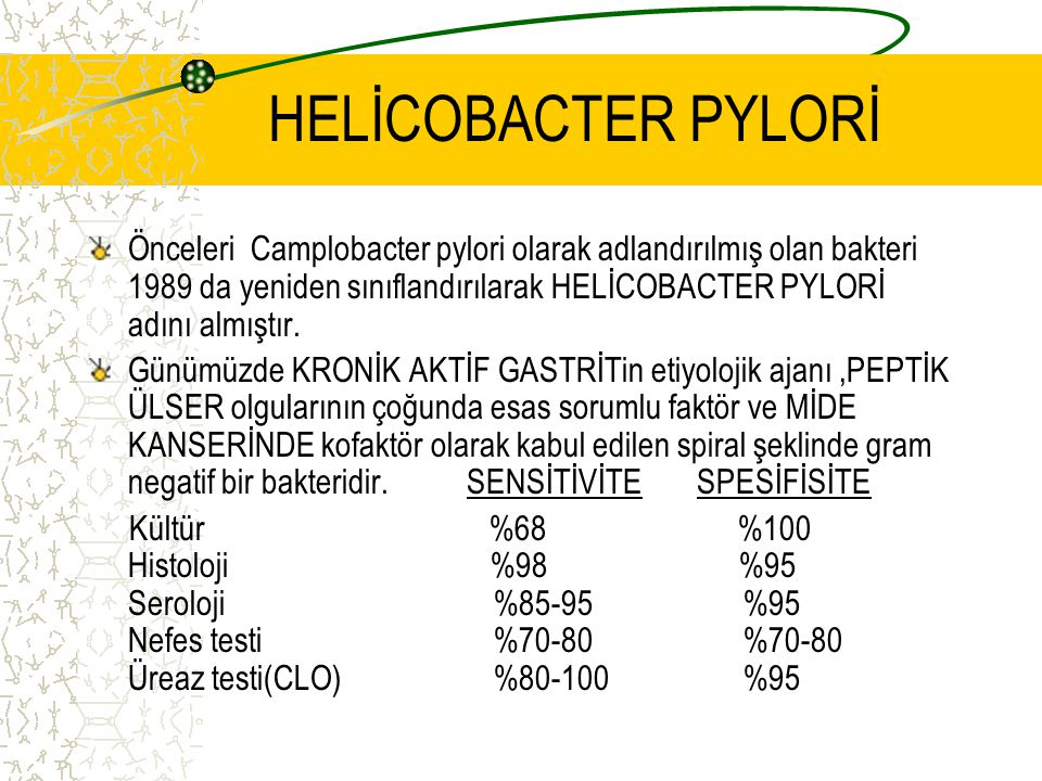 HELİCOBACTER PYLORİ Önceleri Camplobacter pylori olarak adlandırılmış olan bakteri 1989 da yeniden sınıflandırılarak HELİCOBACTER PYLORİ adını almıştı