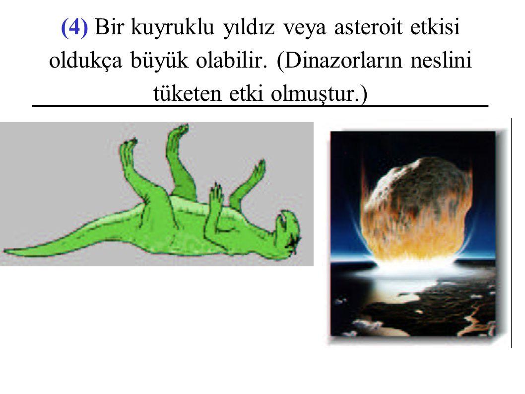 (4) Bir kuyruklu yıldız veya asteroit etkisi oldukça büyük olabilir.