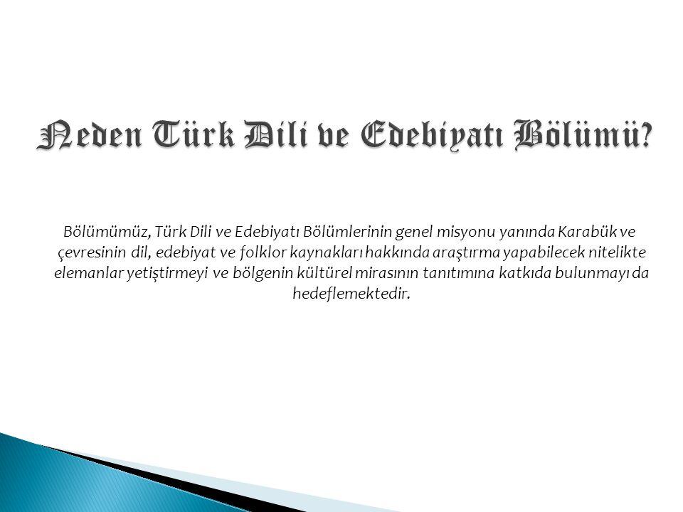 Bölümümüz, Türk Dili ve Edebiyatı Bölümlerinin genel misyonu yanında Karabük ve çevresinin dil, edebiyat ve folklor kaynakları hakkında araştırma yapa