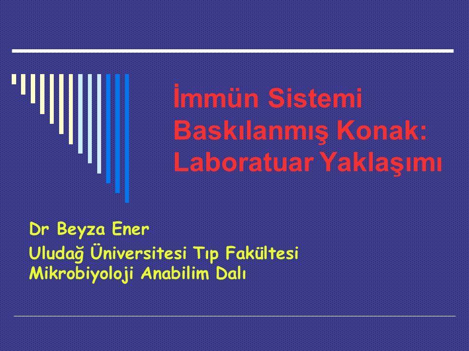 İmmün Sistemi Baskılanmış Konak: Laboratuar Yaklaşımı Dr Beyza Ener Uludağ Üniversitesi Tıp Fakültesi Mikrobiyoloji Anabilim Dalı