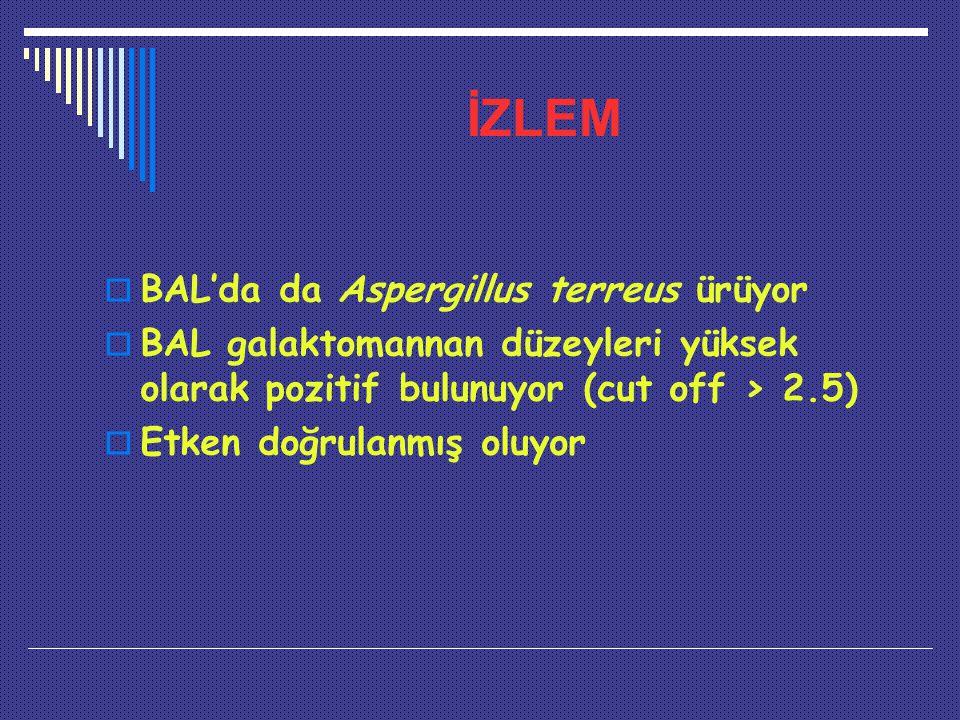 İZLEM  BAL'da da Aspergillus terreus ürüyor  BAL galaktomannan düzeyleri yüksek olarak pozitif bulunuyor (cut off > 2.5)  Etken doğrulanmış oluyor