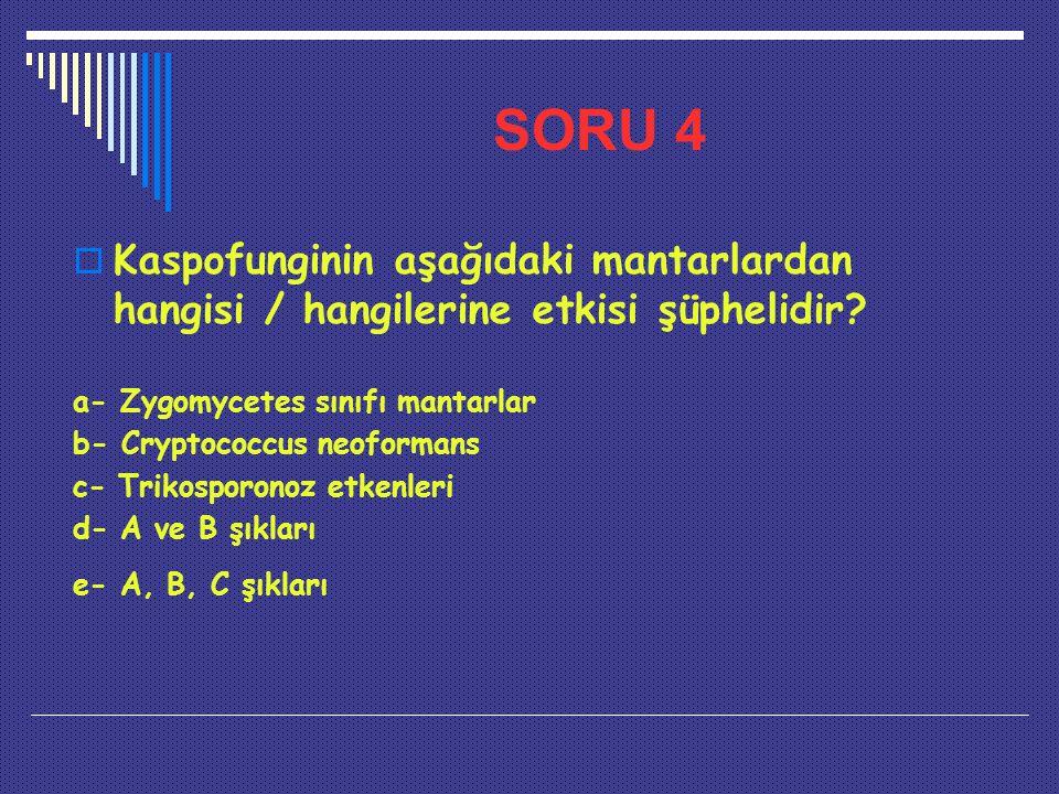SORU 4  Kaspofunginin aşağıdaki mantarlardan hangisi / hangilerine etkisi şüphelidir? a- Zygomycetes sınıfı mantarlar b- Cryptococcus neoformans c- T