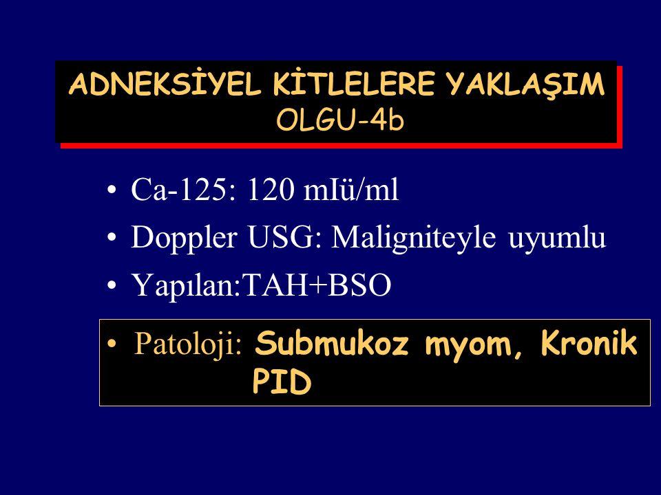 ADNEKSİYEL KİTLELERE YAKLAŞIM OLGU-4a M.T., 42 yaşında, 2 çocuklu,Adana. Tarih:Eylül 1999 Ön tanı:Submukoz myoma USG: Adneksiyal bölgede 3.5x3.5 cm ça