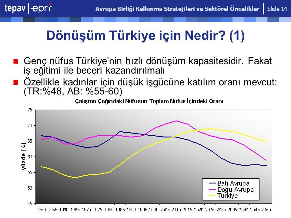 Avrupa Birliği Kalkınma Stratejileri ve Sektörel Öncelikler Slide 14 Dönüşüm Türkiye için Nedir? (1) Genç nüfus Türkiye'nin hızlı dönüşüm kapasitesidi