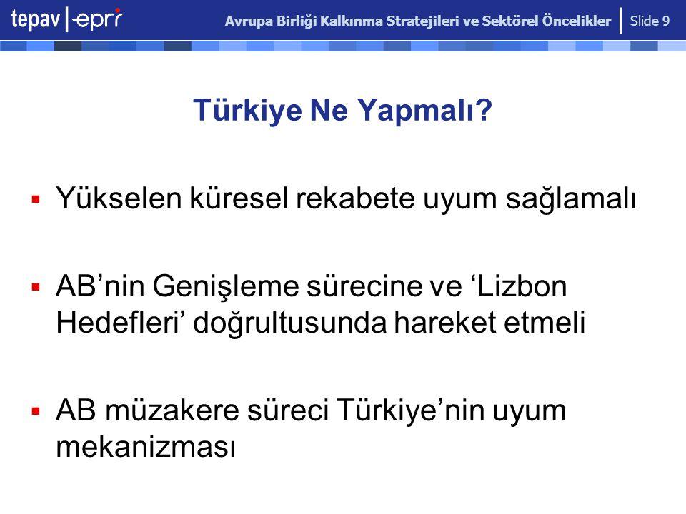 Avrupa Birliği Kalkınma Stratejileri ve Sektörel Öncelikler Slide 9 Türkiye Ne Yapmalı?  Yükselen küresel rekabete uyum sağlamalı  AB'nin Genişleme