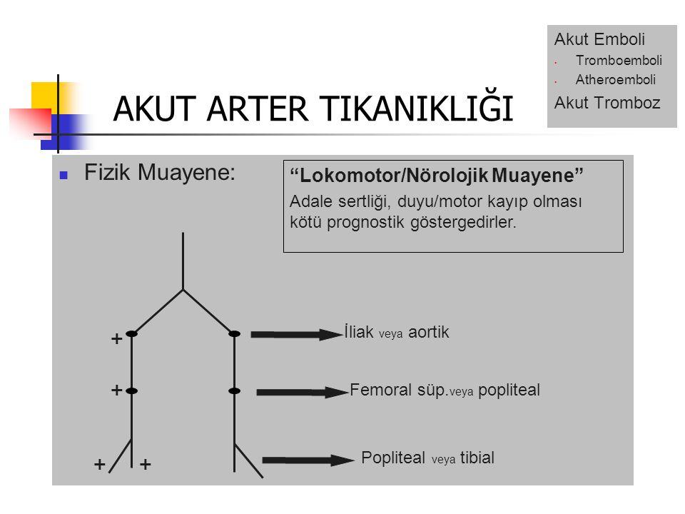 Fizik Muayene: İliak veya aortik Femoral süp.
