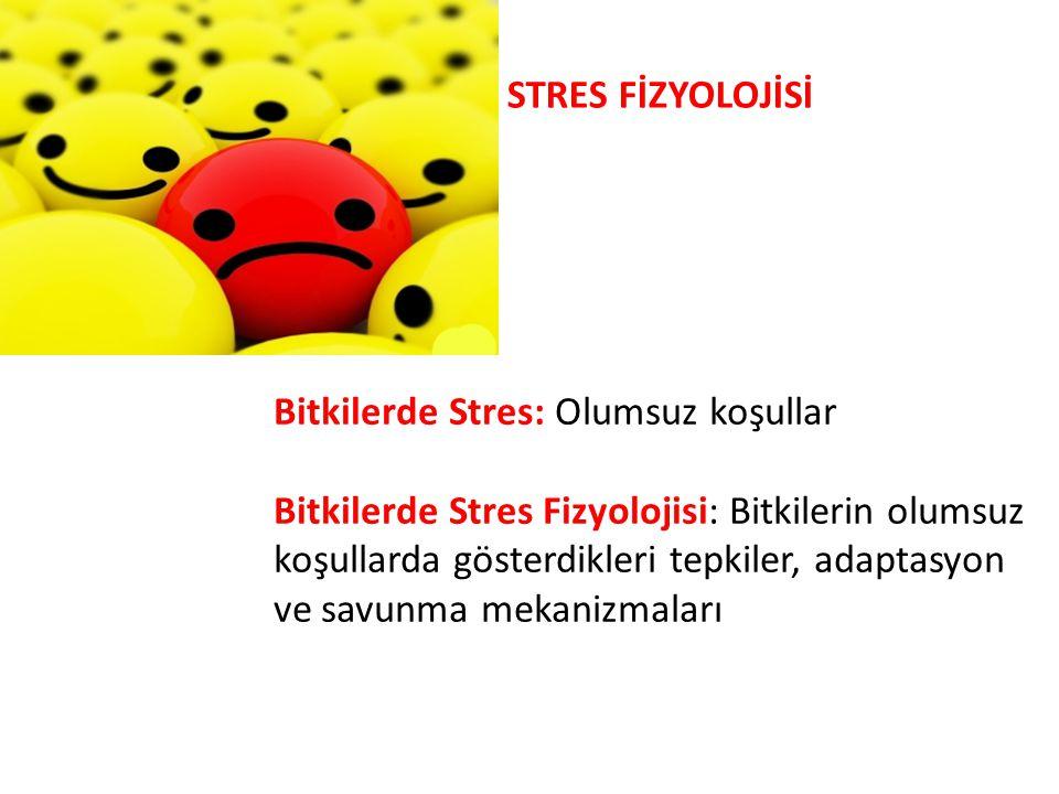 STRES FİZYOLOJİSİ Bitkilerde Stres: Olumsuz koşullar Bitkilerde Stres Fizyolojisi: Bitkilerin olumsuz koşullarda gösterdikleri tepkiler, adaptasyon ve
