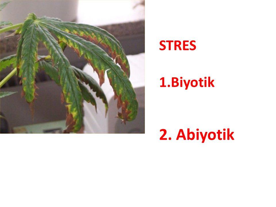 STRES 1.Biyotik 2. Abiyotik