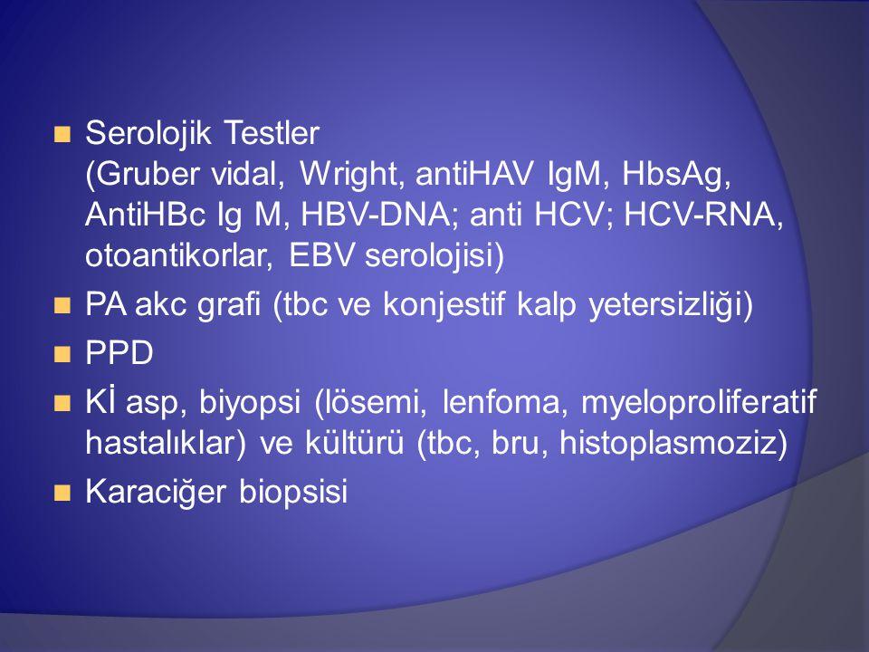 Serolojik Testler (Gruber vidal, Wright, antiHAV IgM, HbsAg, AntiHBc Ig M, HBV-DNA; anti HCV; HCV-RNA, otoantikorlar, EBV serolojisi) PA akc grafi (tbc ve konjestif kalp yetersizliği) PPD Kİ asp, biyopsi (lösemi, lenfoma, myeloproliferatif hastalıklar) ve kültürü (tbc, bru, histoplasmoziz) Karaciğer biopsisi