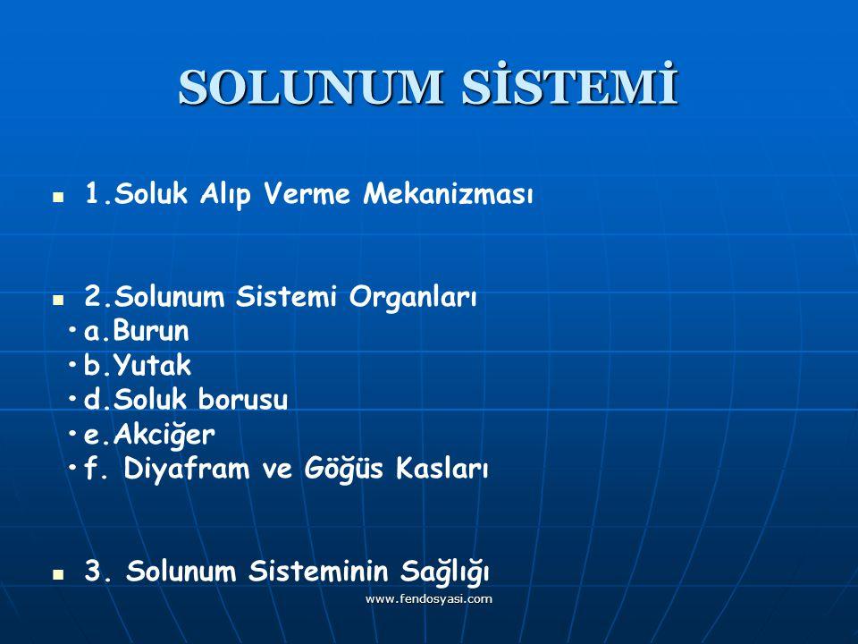www.fendosyasi.com SOLUNUM SİSTEMİ 1.Soluk Alıp Verme Mekanizması 2.Solunum Sistemi Organları a.Burun b.Yutak d.Soluk borusu e.Akciğer f. Diyafram ve