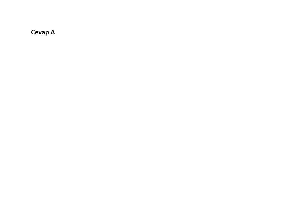 14.Aşağıdaki cümlelerin hangisinde ünsüz düşmesi vardır.