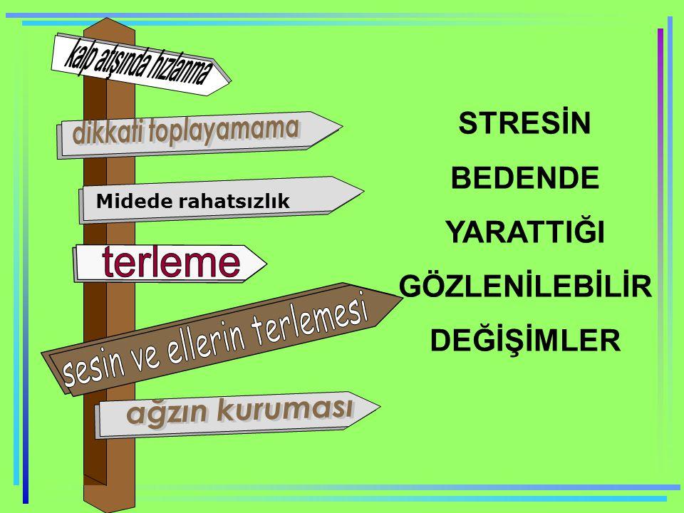 STRESİN BEDENDE YARATTIĞI GÖZLENİLEBİLİR DEĞİŞİMLER Midede rahatsızlık