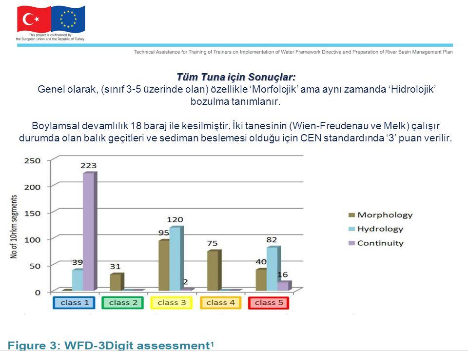 Tüm Tuna için Sonuçlar: Tüm Tuna için Sonuçlar: Genel olarak, (sınıf 3-5 üzerinde olan) özellikle 'Morfolojik' ama aynı zamanda 'Hidrolojik' bozulma tanımlanır.