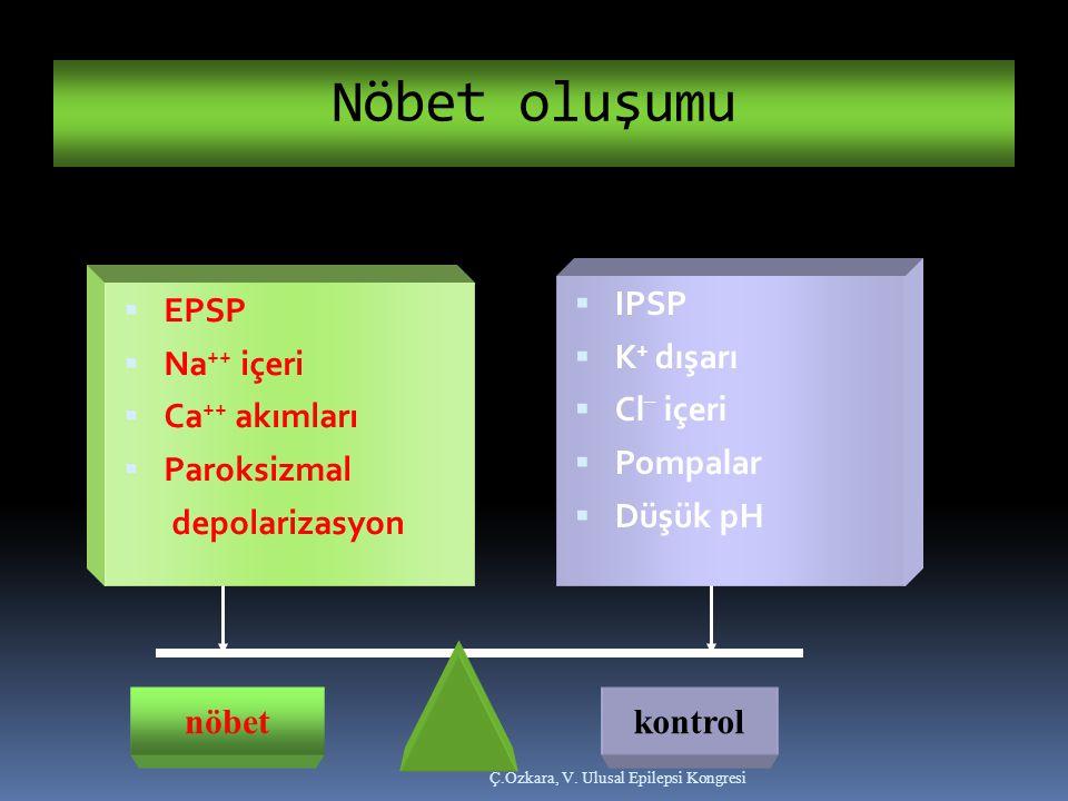 Nöbet oluşumu Ç.Özkara, V. Ulusal Epilepsi Kongresi nöbetkontrol