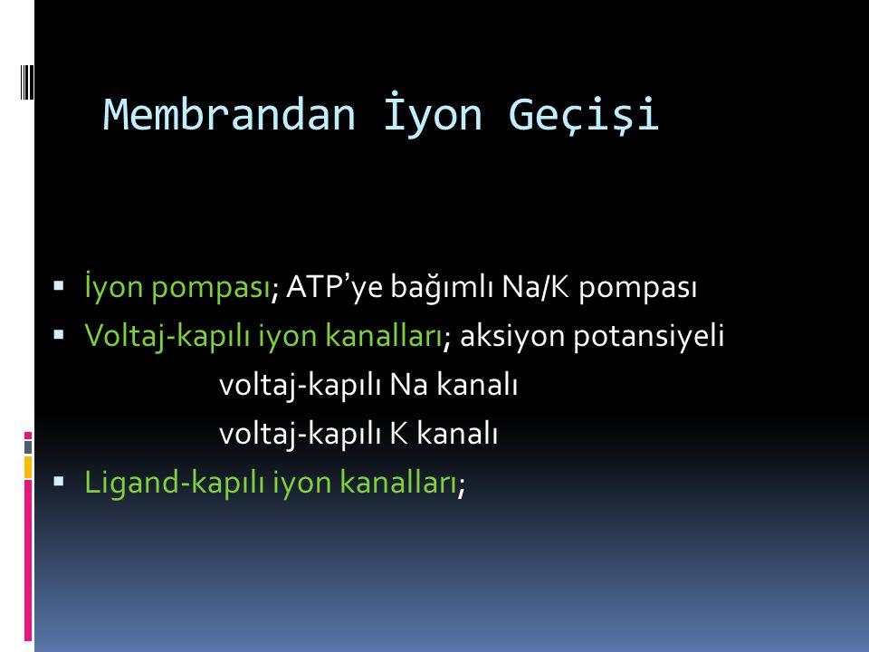 Membrandan İyon Geçişi  İyon pompası; ATP ' ye bağımlı Na/K pompası  Voltaj-kapılı iyon kanalları; aksiyon potansiyeli voltaj-kapılı Na kanalı volta