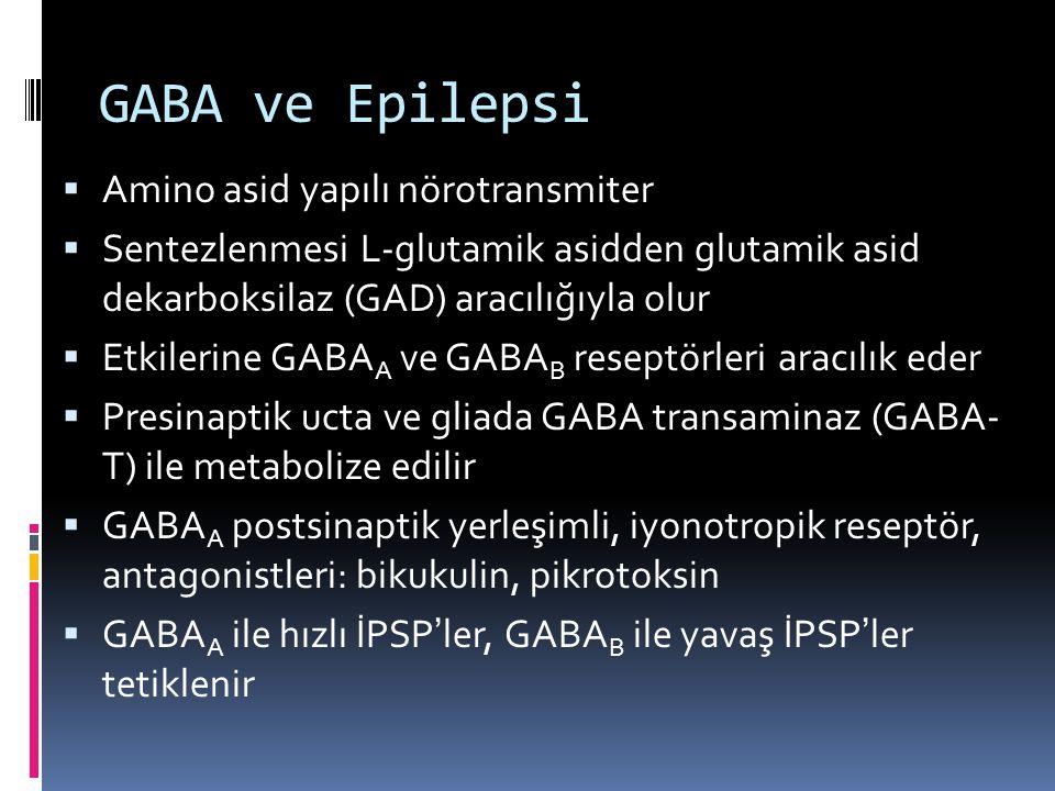 GABA ve Epilepsi  Amino asid yapılı nörotransmiter  Sentezlenmesi L-glutamik asidden glutamik asid dekarboksilaz (GAD) aracılığıyla olur  Etkilerin