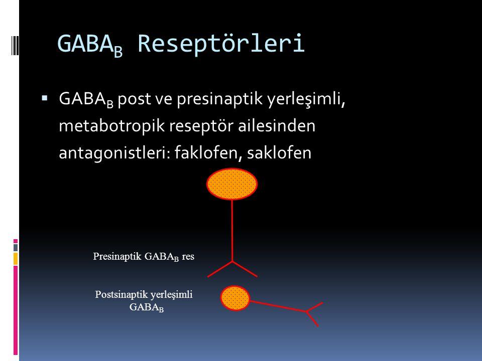 GABA B Reseptörleri  GABA B post ve presinaptik yerleşimli, metabotropik reseptör ailesinden antagonistleri: faklofen, saklofen Presinaptik GABA B re